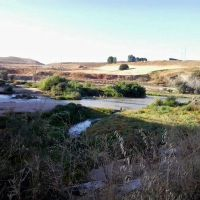 Por la ribera del Guadalquivir y los caminos a Medina Azahara. Paseos de Jane Córdoba 2017